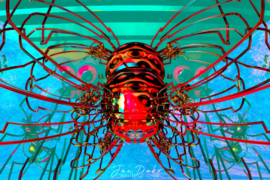 Papillon5_Bis.jpg