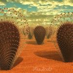 DesertCactus.jpg